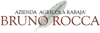 it24_druno_rocca_logo.jpg